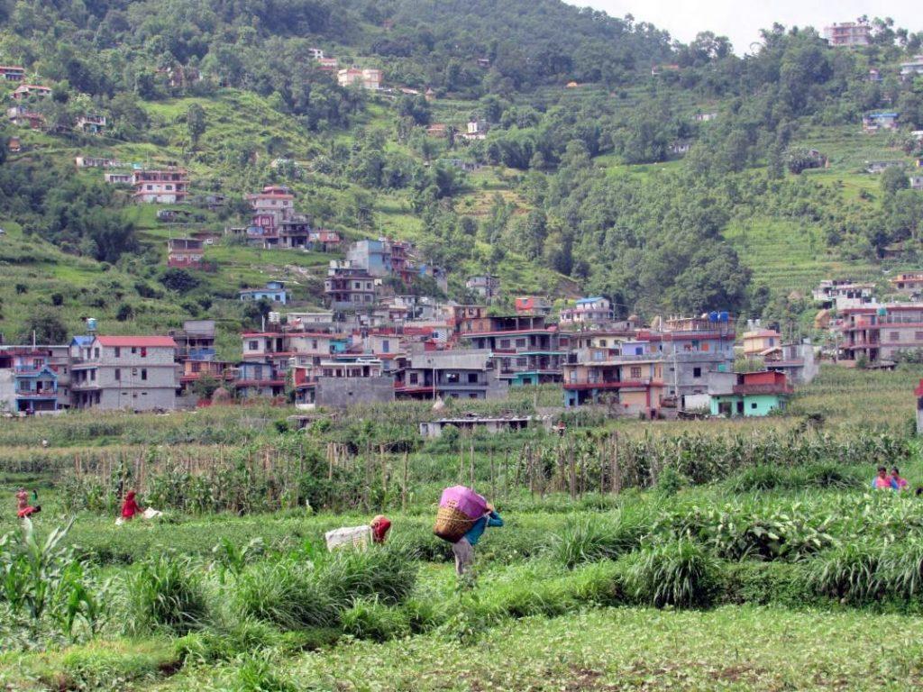 running pokhara 3